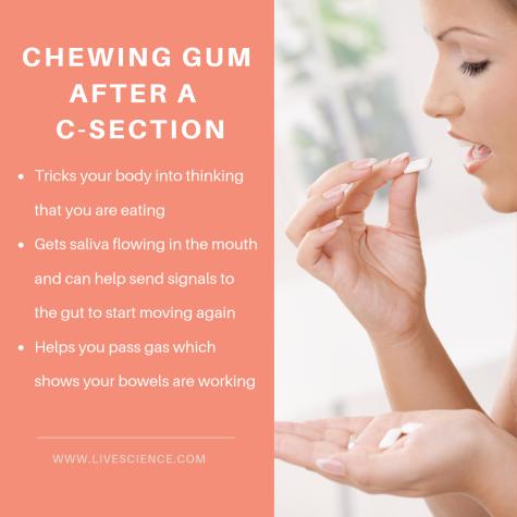 Chewinggumaftercsection.